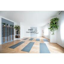 120 perces élő előadás az Alexander Yoga stúdióban